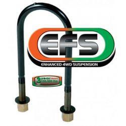 Стремянка рессорная EFS C451